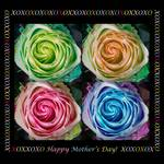 """Colorful Rose Spirals Happy Mothers Day Hugs and K by James """"BO"""" Insogna"""