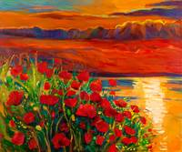 poppy field ocean and sunset