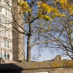 """Golborn Road,London,study1"" by beppeschiavonephotography"