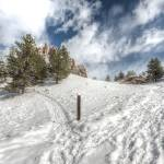 """Snowy Path to Red Rocks"" by mattsellars"