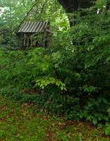 Old Playhouse in garden
