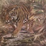 """""""Vintage Illustration of a Tiger"""" by neilepi"""