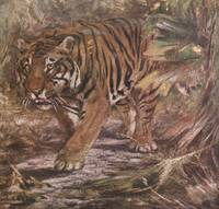 Vintage Illustration of a Tiger