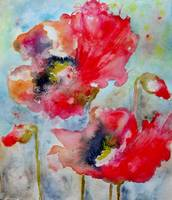 Dreamy Poppies II