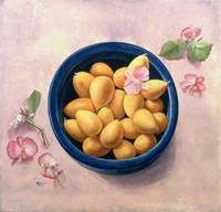 Kumquats and Blossoms, 1986 (oil on canvas)