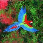 """Rachels Bird"" by LimeCreekArt"