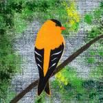 """Laurens Bird"" by LimeCreekArt"