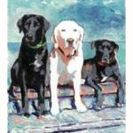 """Poster of Dogs - Labradors"" by BeaconArtWorksCorporation"