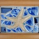 """Travels of the Sea Star"" by sondrasula"