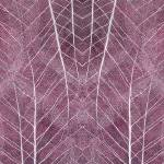 """Leaf Symmetry Red Violet"" by CoraNiele"
