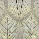 """Leaf Symmetry Beige"" by CoraNiele"