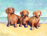 Dachshunds Hot Diggity