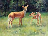 Deer Playing