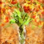 """""""Tulips"""" by ScovoPhoto"""