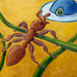 """Ant and UFO"" by Rudy"