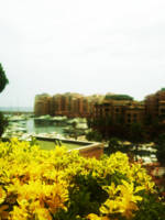 A view of Montecarlo