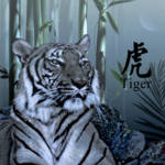 """""""Year of the Tiger"""" by spadecaller"""