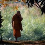 """""""A Monk"""
