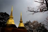 Golden Chedis at Wat Pra Doi Tung