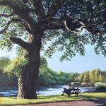 """Southampton Riverside park oak tree with cyclist"" by martindavey"