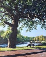 Southampton Riverside park oak tree with cyclist