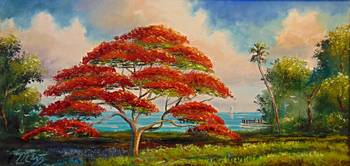 Royal Poinciana Large Panarama