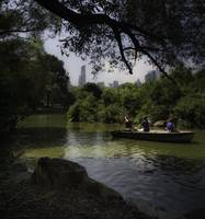 Central Park Relaxation