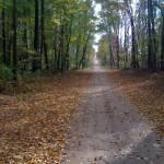 """Michigan road"" by studiobythesound"