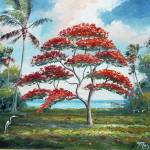 """Royal Poinciana and Palm Tree"" by mazz"