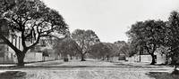 Panorama of Oakland Street c1890 by WorldWide Archive