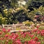 """Rose Garden Respite"" by JessicaJenney"