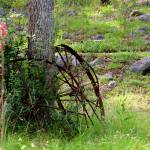 """Rustic Wagon Wheels"" by TealWingPhotography"