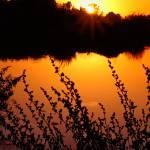 """""""GRP Sunset"""" by arizonawriter"""