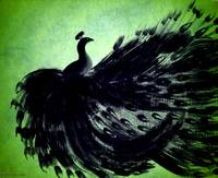 BLACK PEACOCK in GREEN