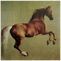 Whistlejacket (1762)