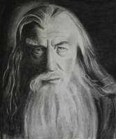 Gandalf. Original charcoal drawing.