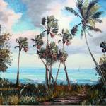 """Palm Cove"" by mazz"