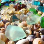 Blue Sea Glass art prints Coastal Agates Shells Se