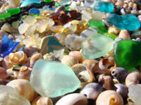 Blue Sea Glass art prints Coastal Agates Shells Se