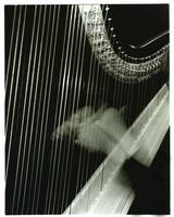 beautiful music harp