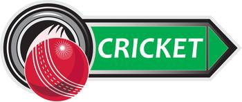 cricket_ball_METALLIC_ARROW