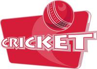 cricket sports ball