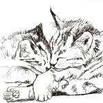 """Joint Cat Nap"" by katarinaHarstad"