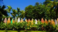 Original Surfboard Fence - Maui