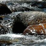 """""""Leather Barrell Creek - NSW Snowy Mountains"""" by Highcountryimaging"""