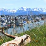 """The Homer Harbor"" by DianeRoher"