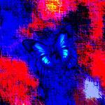 """""""Blue Butterfly Red Abstract 2"""" by TheNorthernTerritory"""