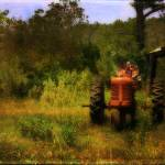 """Old Red Tractor"" by beckybarnhardt"