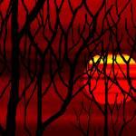 """November Sunset 2"" by TheNorthernTerritory"