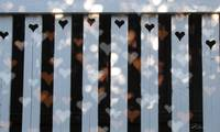 Sweet Heart Fence